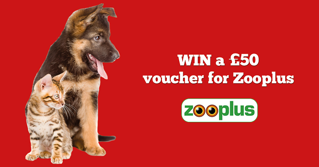 Win a £50 Zooplus.co.uk voucher