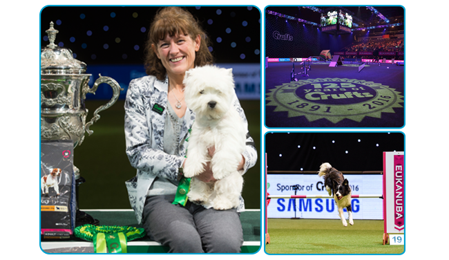 Report from crufts